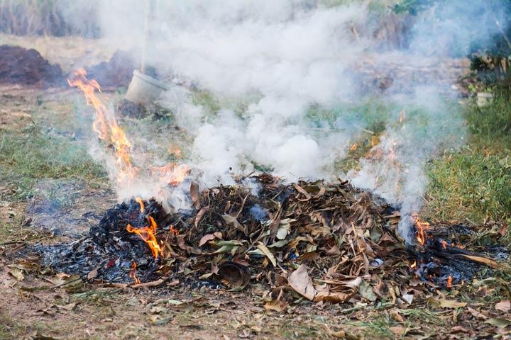 Feuer mit Pflanzenabfällen