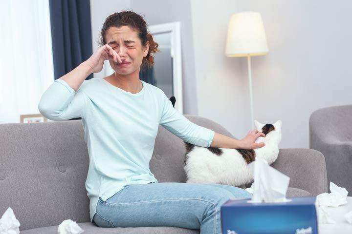 Tierhaarallergie bei Katzen